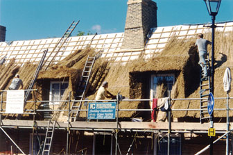 thatch roofs and thatch roof products fire safety thatched house insurance and thatched property for sale thatching advice for thatched property owners - Thatched Rood